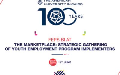 FEPS BI at the Marketplace: Strategic Gathering Of Youth Employment Program Implementors